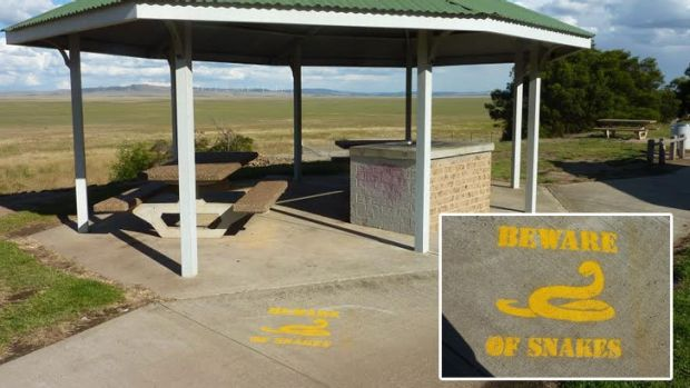 The rest stop at Lake George, just north of Canberra, with a painted snake warning.