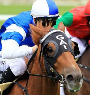 Frespanol, ridden by Tommy Berry at Randwick last year.