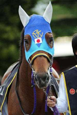 Admire Rakti before winning the Caulfield Cup.