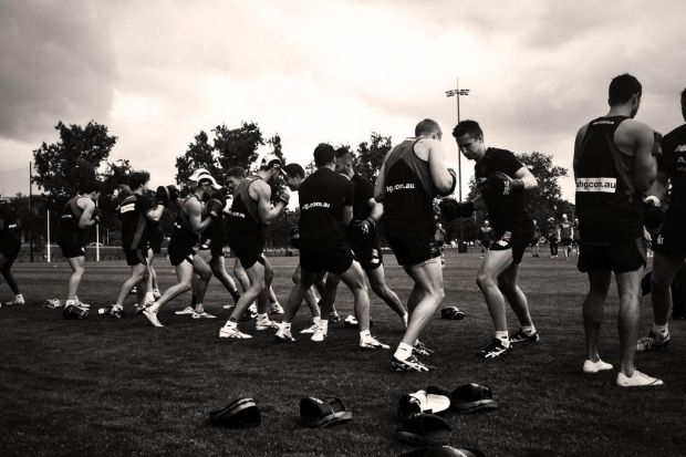 Melbourne players get stuck into training.
