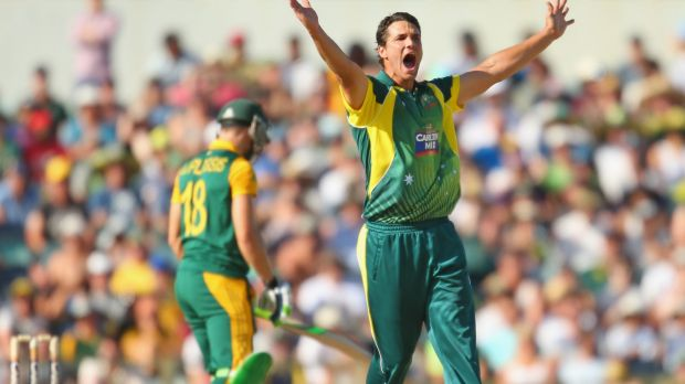 No need to panic: Cricket Australia say they budgeted for modest crowds in the ODIs.