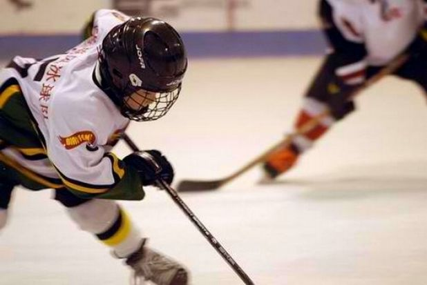 "Human: ""A young hockey player playing in the ice rink."" Computer model: ""Two hockey players are fighting over the puck."""