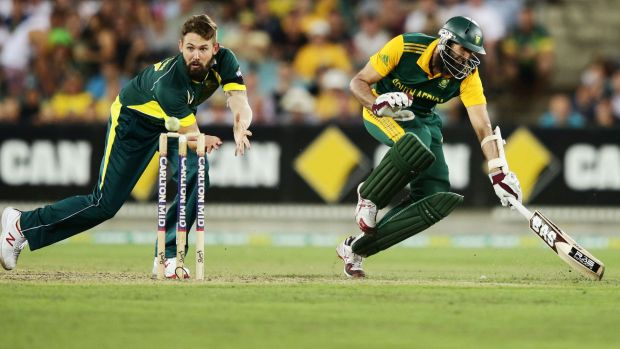 Close call: South Africa's Hashim Amla makes the crease as Kane Richardson fields.
