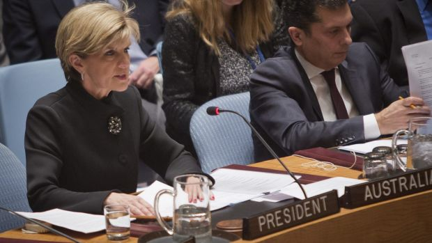 In the hot seat: Foreign Affairs Minister Julie Bishop speaks during a meeting of the UN Security Council in New York on ...