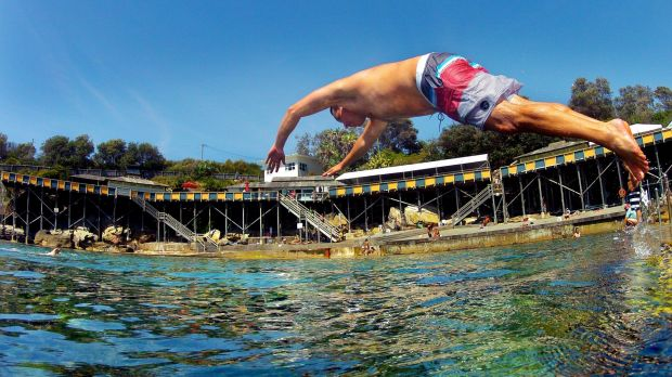 Cooling off: Miles Chappell of Maroubra dives into Wylie's Baths at Coogee.