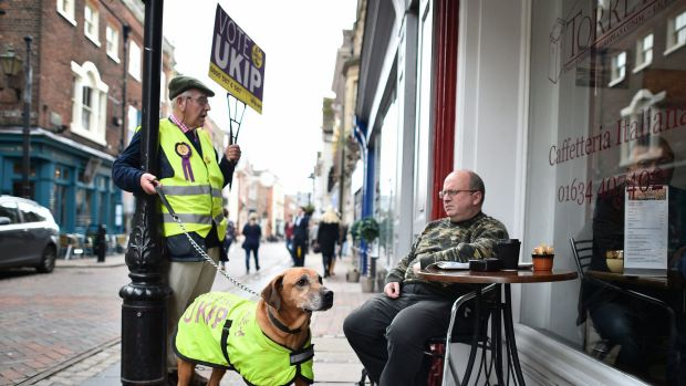 Every man and his dog: Campaigning in the run-up to the key Rochester and Strood byelection.