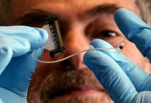 Cutting-edge science: Bionic eye researcher Professor Steven Prawer.