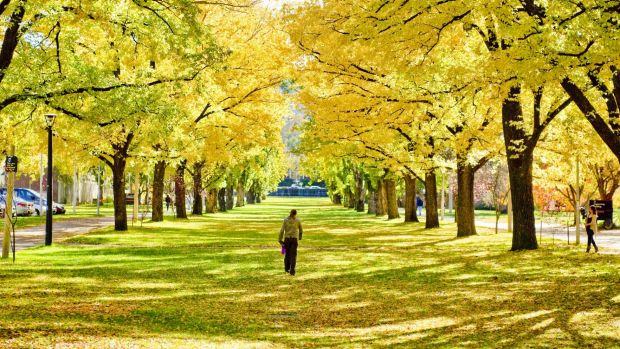 Canberra has jumped 16 places in the QS Best Student Cities 2015, ranked the 21st best city in the world.