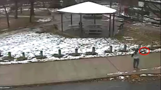 Tamir E. Rice, 12, points a pellet gun at a Cleveland park in a still image from video.