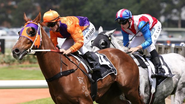 From Rocky to Rosehill: Jay Ford and Our Boy Malachi score.