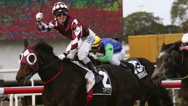 Diamond day: Tim Bell celebrates his Queensland Oaks triumph on Tinto in May.