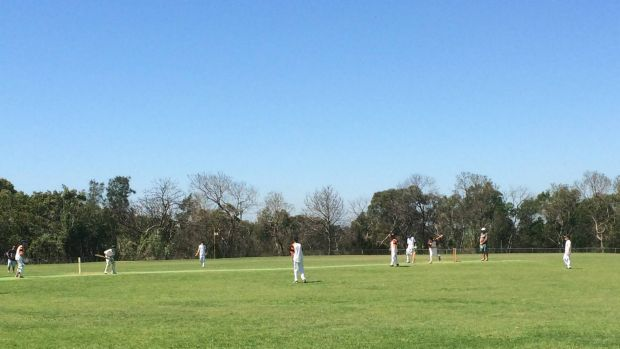 Cricket Australia is encouraging junior cricketers to play this weekend.