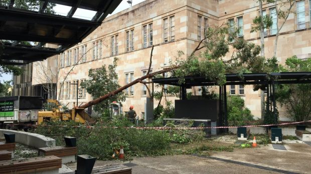 UQ suffered heavily in the storm of November 27.