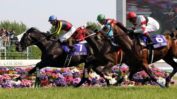 Possible talent for next year's spring carnival: Fenomeno racing in Japan.