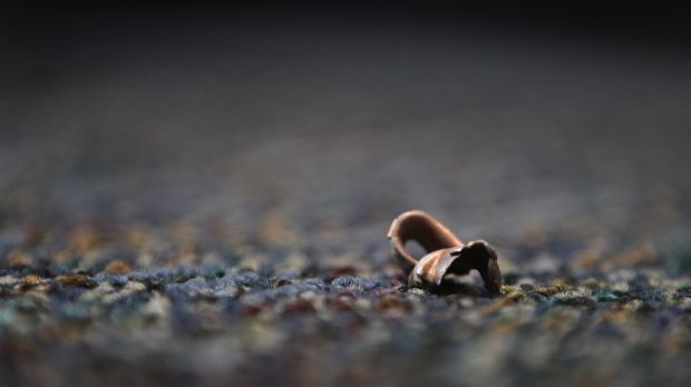 Bullet shells rest on the crime scene pavement.