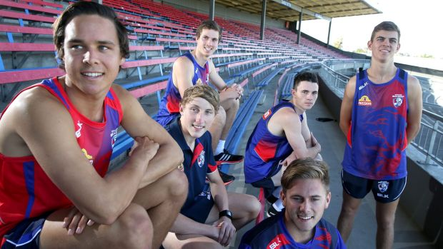 New Western Bulldogs draftees (left to right): Lukas Webb, Zaine Cordy, Bailey Dale, Toby McLean, Caleb Daniel and ...