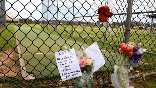In memory: The pitch where Phillip Hughes played as a youth.