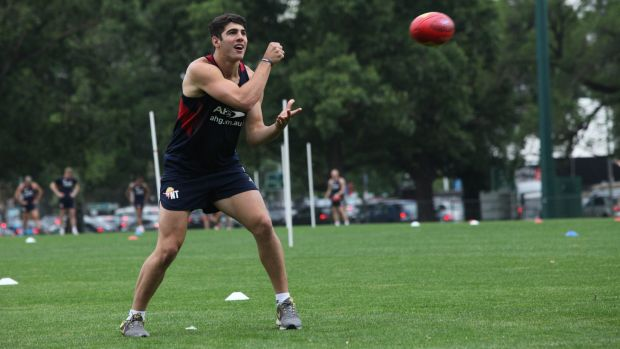 Christian Petracca injured his knee at training and will miss the 2015 season.