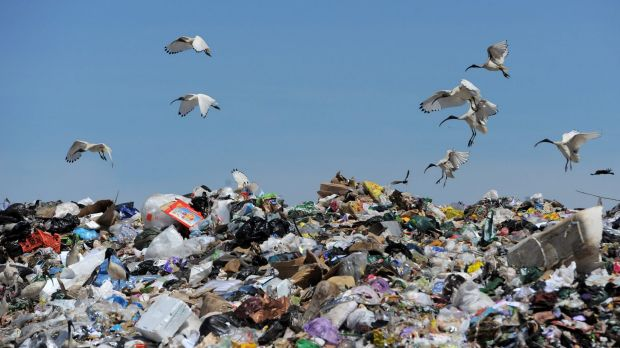 Victorian Greens leader Greg Barber said waste reduction efforts had stalled.