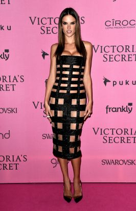 Alessandra Ambrosio on the red carpet.