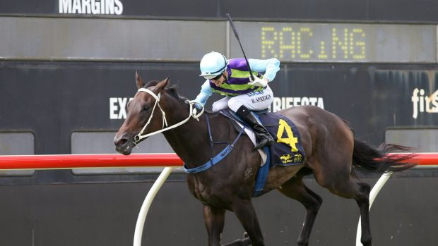 One to watch: Resurrect wins for Blake Spriggs may be a late scratching at Rosehill.