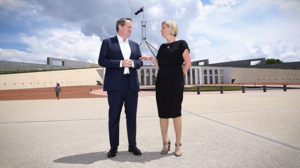 Opposition Leader Bill Shorten welcomes outgoing ACT Chief Minister Katy Gallagher's decision to move to the Senate.