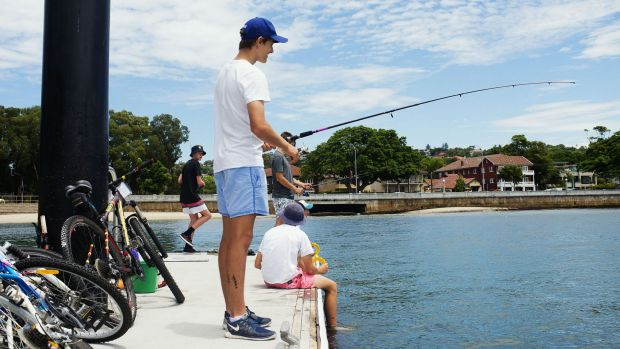 Tommy Scribner fishing on the jetty at Rose Bay with his mates.