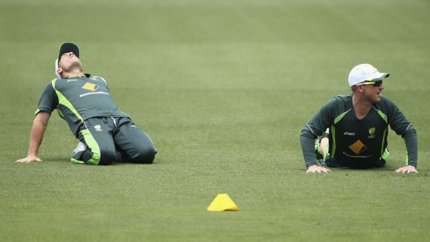 David Warner and Brad Haddin train during a nets session at Adelaide Oval on Saturday.