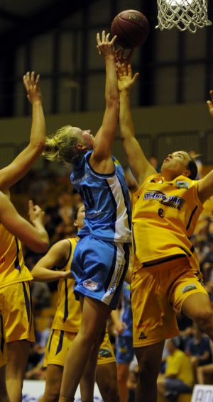 Canberra Capitals skipper Abby Bishop was named the WNBL player of the month for November.