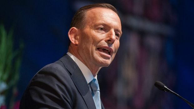 Prime Minister Tony Abbott has said the government's planned GP fee does not have the support needed to pass the Senate.