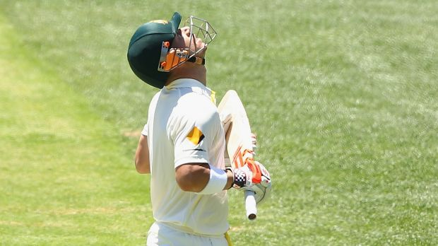 David Warner looked to the sky after reaching 63 not out.