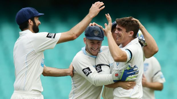Back in the middle: NSW fast bowler Sean Abbott celebrates with teammates after taking the wicket of Queensland's Nathan ...