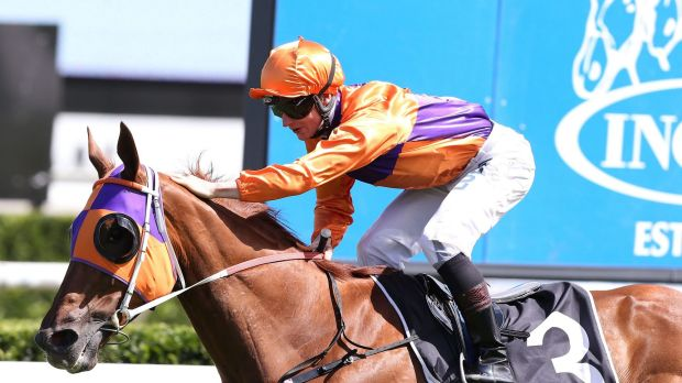 Dominant win: James McDonald on Our Boy Malachi at Randwick on Saturday.