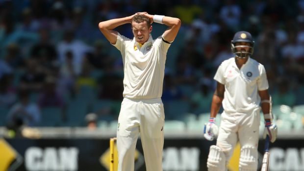 Under pressure: Fast bowler Peter Siddle shows the strain on day five in Adelaide.
