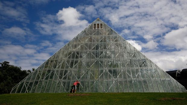 A tourist looks into the tropical pyramid at the Royal Botanic Gardens in Sydney.