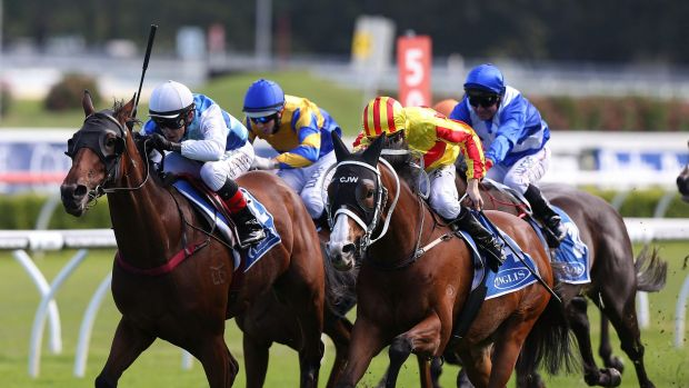 True lightweight: Luke Tarrant on Rudy (left) heads for victory in the Villiers at Randwick on Saturday.