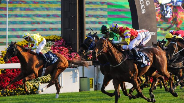 Close: Criterion (left) just goes down to Joao Moreira's Designs On Rome in the Hong Kong Cup.