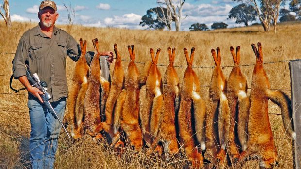 Sports shooter and Silva Fox whistle proprietor Ron Kiehne with 10 shot foxes.