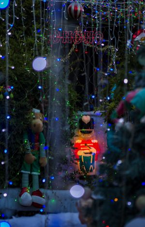 Spreading the joy: Canberra residents have stepped up their Christmas displays this year.