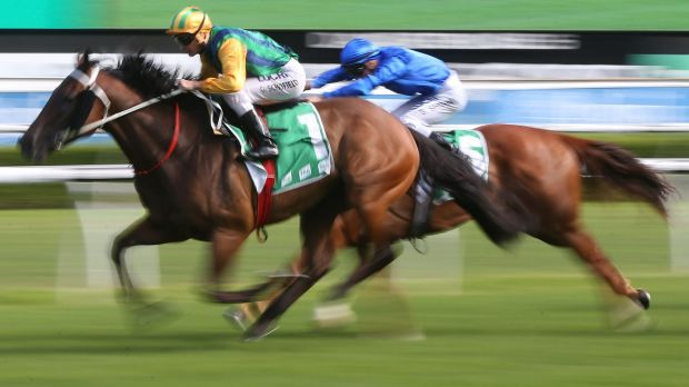 Talent: Glyn Schofield rides Ball Of Muscle at Royal Randwick.
