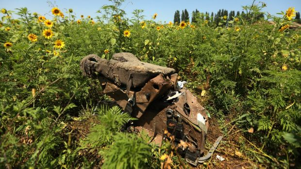 Heartbreaking: One of the pilot's seats from MH17 lies in a Donetsk field. The sunflower seeds - from the same crop that ...