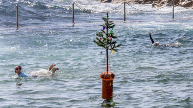 Swimmers at Wylies Baths in Coogee on Christmas Day.