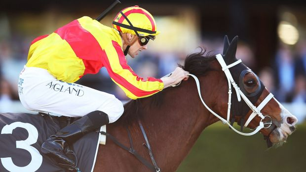 Rejuvenated: Tye Angland gets the best from I'm Imposing at Randwick.