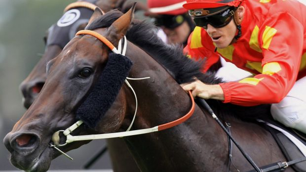 """""""He's in really good form at the moment"""": Gary Moore on Happy Galaxy."""