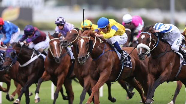 Reaching for the Sky: Sydney meetings such as Friday's Summer Cup program at Randwick look likely to be shown on Sky ...