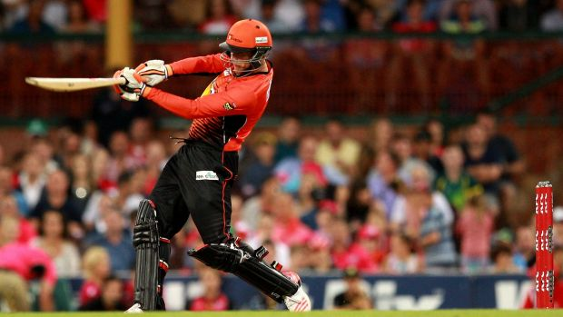 Top edge: Sam Whiteman on his way to 14 for the Perth Scorchers.