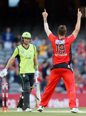 Devastating return:  James Pattinson.