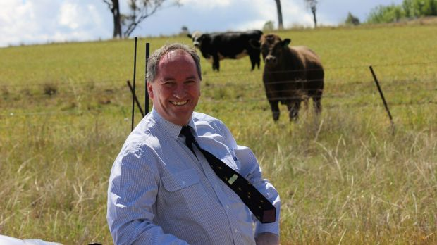 Barnaby Joyce became the Member for New England at the 2013 election following a stint in the Senate.