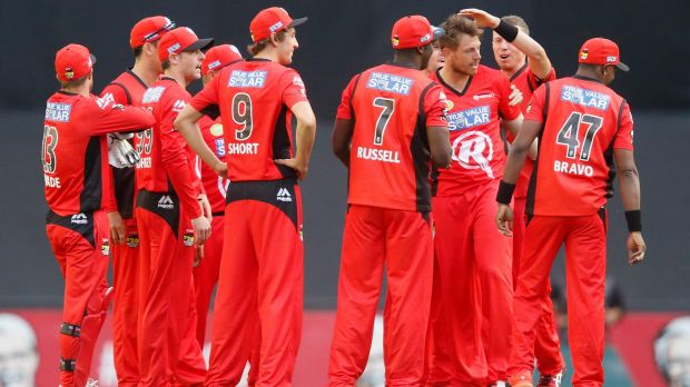 Red alert: James Pattinson is congratulated by his teammates after dismissing Jacques Kallis.