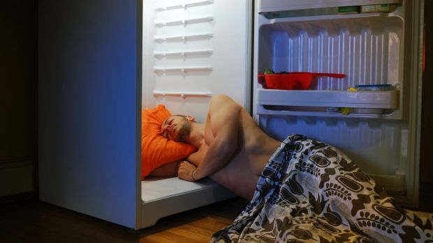 When the fridge is the most comfortable place to sleep.